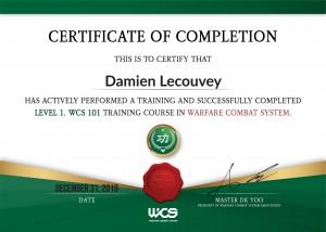 damien lecouvey coach sportif dk yoo instructeur self defense cote or wcs warfare